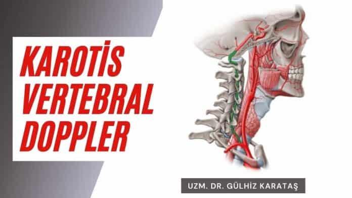 karotis vertebral doppler